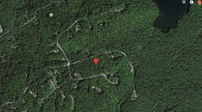 Saranac Lake NY Residential Lots & Land For Sale: $119,000