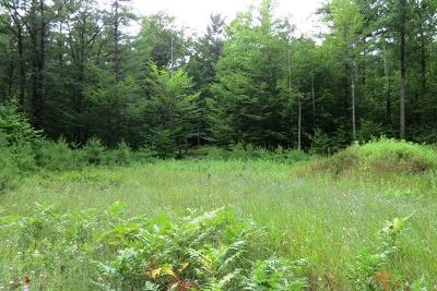 Essex County Residential Lots & Land For Sale: Lot 76 Evergreen