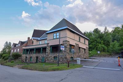 Saranac Lake Commercial For Sale: 600 Ama Way