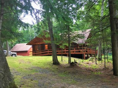 Raquette Lake NY Single Family Home For Sale: $499,000