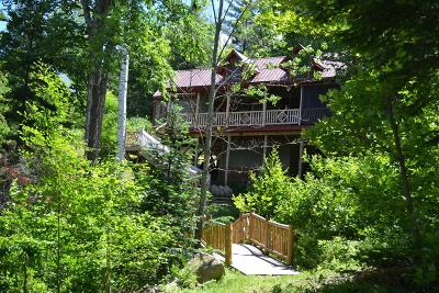 Lake Placid, Saranac Lake, Tupper Lake Single Family Home For Sale: 440 Oseetah Lake