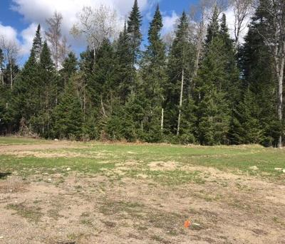 Residential Lots & Land For Sale: Otter Way