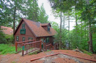 Lake Placid, Saranac Lake, Tupper Lake Single Family Home For Sale: 113 Branch Farm Road