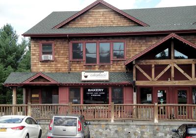 Lake Placid NY Commercial For Sale: $115,000
