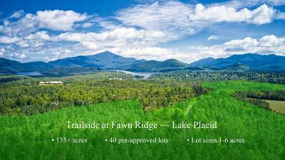 Bloomingdale, Lake Placid, North Elba, Ray Brook, St Armand, Brighton, Franklin, Gabriels, Harrietstown, Lake Clear, Lake Titus, Loon Lake, Onchiota, Paul Smiths, Rainbow Lake, Santa Clara, Saranac Inn, Saranac Lake, Upper Saranac Lake, Vermontville Residential Lots & Land For Sale: Sugar Run Rd