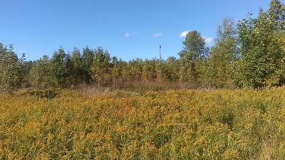 Franklin County Residential Lots & Land For Sale: Cushman Road