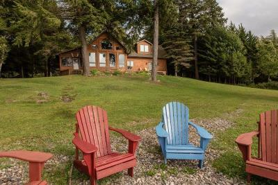 Colton, Cranberry Lake, South Colton, Wanakena Single Family Home For Sale: 118 Lone Pine Rd.