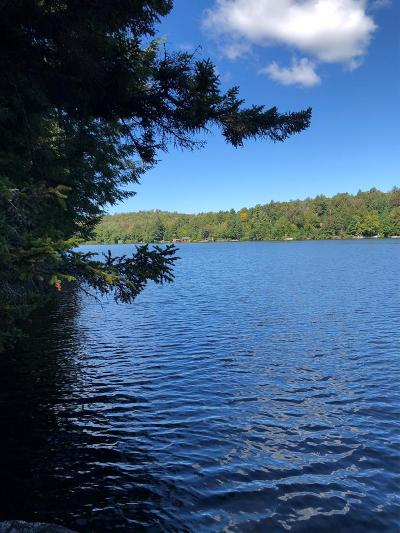 Single Family Home For Sale: 44 Eagle Crag Lake
