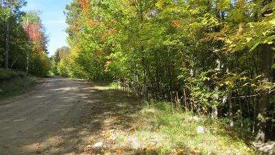 Residential Lots & Land For Sale: Lot Quaker Mt. Road