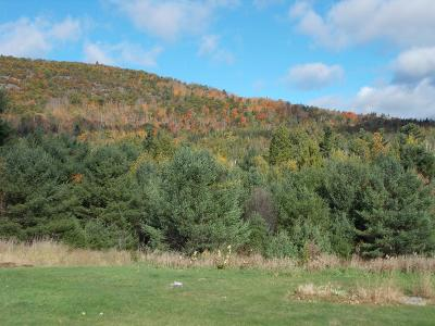 Essex County Residential Lots & Land For Sale: 9216 Nys Route 9n