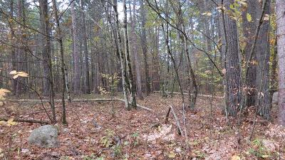 Essex County Residential Lots & Land For Sale: 71 Lot Antler