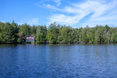 Saranac Lake Single Family Home For Sale: 463 Witchindin