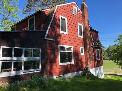 Saranac Lake Single Family Home For Sale: 110 Petrova Ave