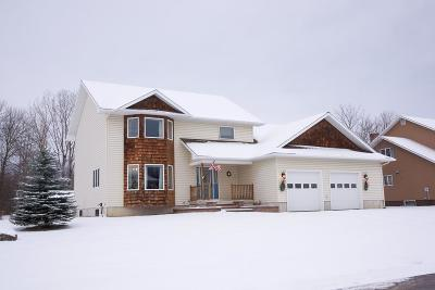Single Family Home For Sale: 25 Facteau Avenue