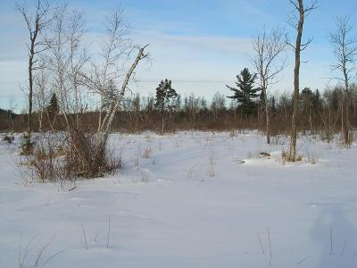 Franklin County Residential Lots & Land For Sale: Off McLaughlin Ave.