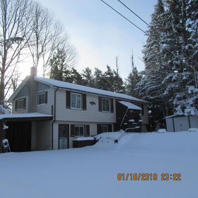 Lake Placid NY Single Family Home For Sale: $220,000