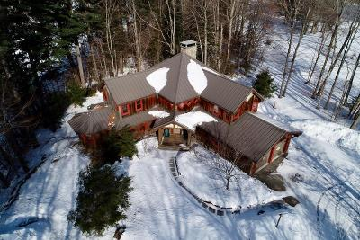 Lake Placid, Saranac Lake, Tupper Lake Single Family Home For Sale: 8 Spread Eagle Way