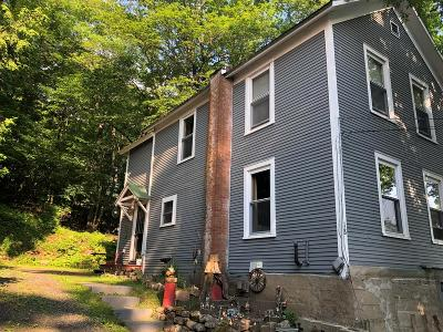 Saranac Lake Single Family Home For Sale: 18 Sumner Place