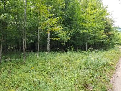 Residential Lots & Land For Sale: Whiteface Memorial Highway