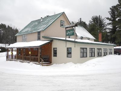 Owls Head NY Commercial For Sale: $229,000