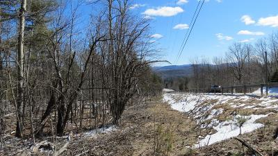Essex County Residential Lots & Land For Sale: Whiteface Memorial Hwy