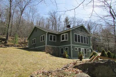 Keene Single Family Home For Sale: 546 Hurricane Rd