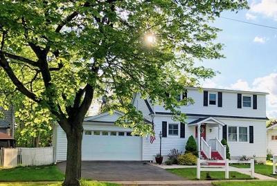 Single Family Home For Sale: 1 Nichols Avenue