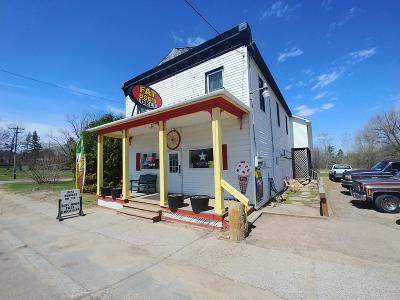 Commercial For Sale: 2561 State Route 11b