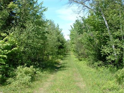 Residential Lots & Land For Sale: Olmstead Road