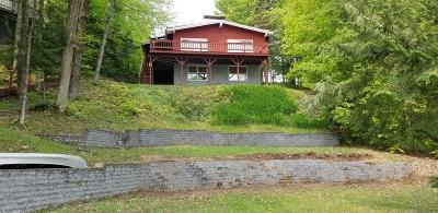 Single Family Home For Sale: 157 Lake Rd.