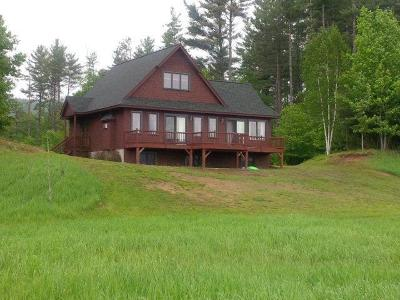 Saranac Lake Single Family Home For Sale: 881 McKenzie Pond Rd
