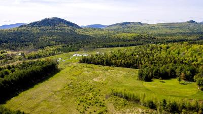 Essex County Residential Lots & Land For Sale: Nys Rt 86