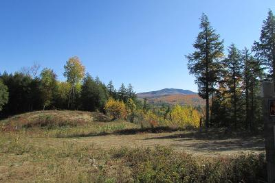 Essex County Residential Lots & Land For Sale: 3101 Nys Route 73