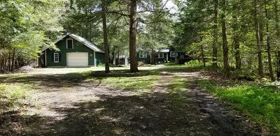 Colton, Cranberry Lake, South Colton, Wanakena Single Family Home For Sale: 469 Columbian Rd.