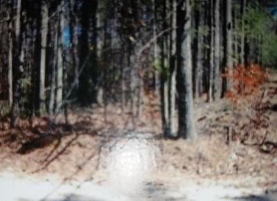 Essex County Residential Lots & Land For Sale: Lot 75 Signor Lane