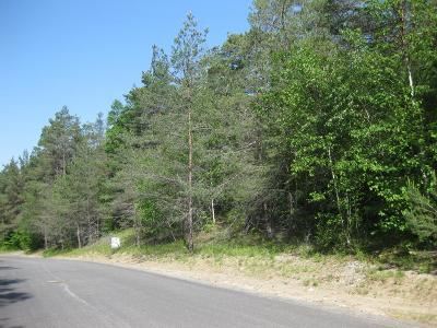Residential Lots & Land For Sale: Lot 46 Algonquin Drive