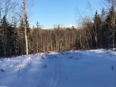 Essex County Residential Lots & Land For Sale: 3 Nys Rt 28n