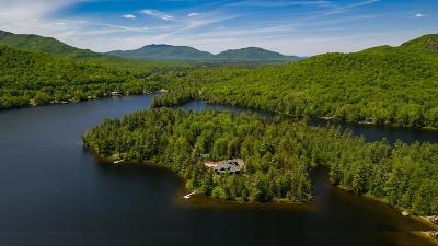 Loon Lake Single Family Home For Sale: 106 Horsehead Point