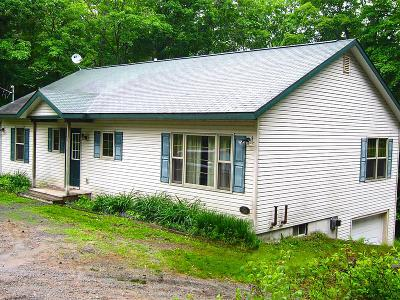 Tupper Lake, Long Lake, Cranberry Lake, Star Lake Single Family Home For Sale: 284 Kickerville Road