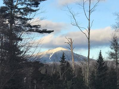 Bloomingdale, Lake Placid, North Elba, Ray Brook, St Armand, Brighton, Franklin, Gabriels, Harrietstown, Lake Clear, Lake Titus, Loon Lake, Onchiota, Paul Smiths, Rainbow Lake, Santa Clara, Saranac Inn, Saranac Lake, Upper Saranac Lake, Vermontville Timeshare For Sale: 7 Whiteface Inn Road