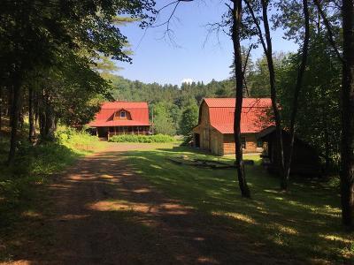 Tupper Lake, Long Lake, Cranberry Lake, Star Lake Single Family Home For Sale: 49 Stone Ln