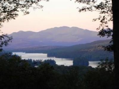 Tupper Lake, Long Lake, Cranberry Lake, Star Lake Single Family Home For Sale: 55 Triplett Hill Way