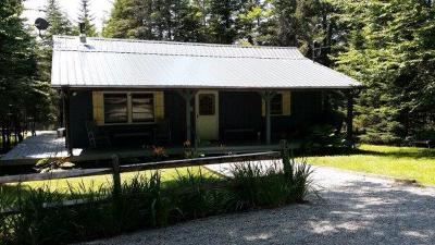 Single Family Home For Sale: 349 Adirondack Lake Rd