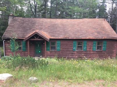 Tupper Lake, Long Lake, Cranberry Lake, Star Lake Single Family Home For Sale: 8150 Nys Route 28n