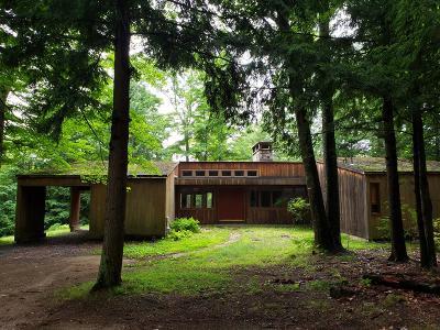 Keene Single Family Home For Sale: 415 Hurricane Rd
