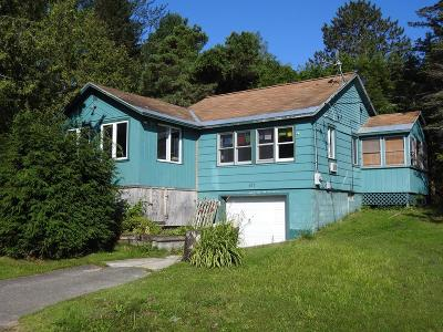 Tupper Lake, Long Lake, Cranberry Lake, Star Lake Single Family Home For Sale: 107 Raquette River Drive