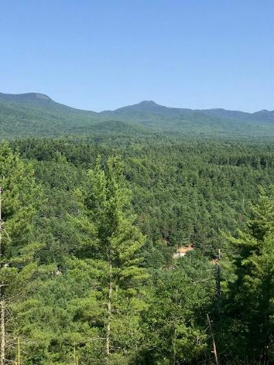 Essex County Residential Lots & Land For Sale: Fox Run Rd