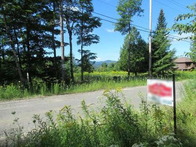Saranac Lake NY Residential Lots & Land For Sale: $34,900