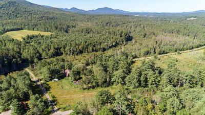 Clinton County, Essex County, Franklin County, Hamilton County, St Lawrence County Residential Lots & Land For Sale: Nys Route 86