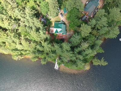 Loon Lake Single Family Home For Sale: 92 Horsehead Point Road